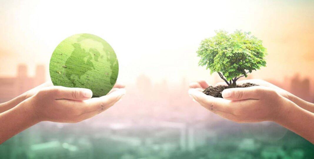 Interesovanje za organsku proizvodnju u porastu – najavljen novi zakon