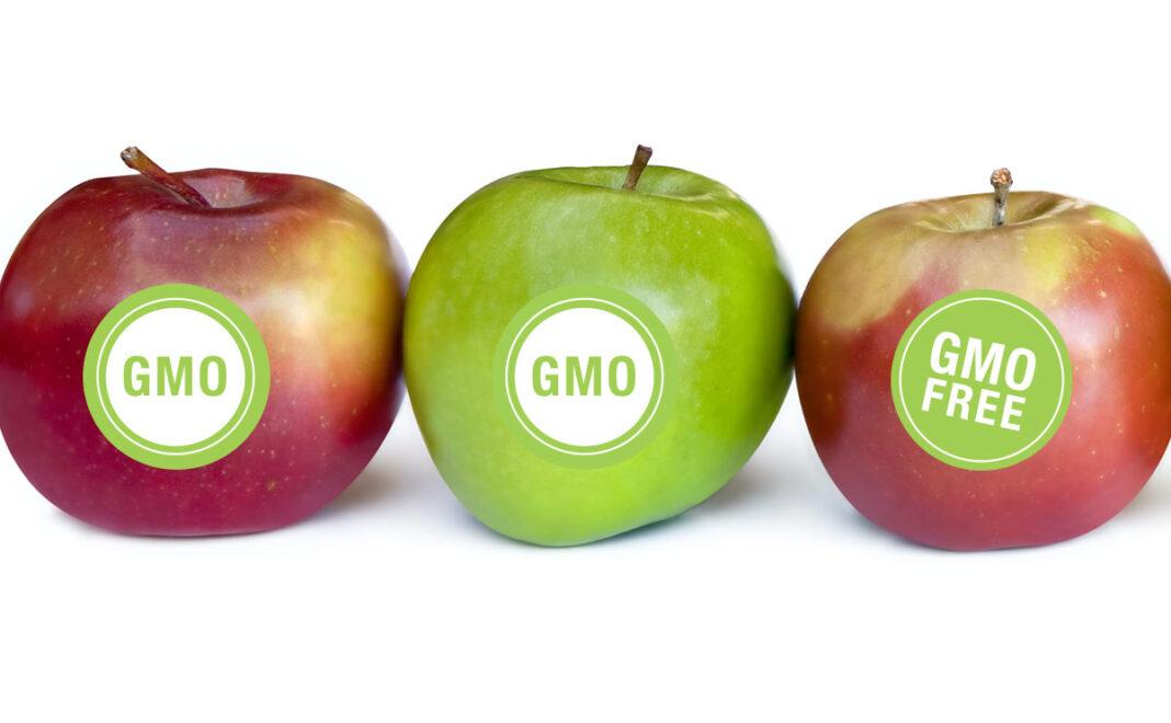 Ministar poljoprivrede: Nema GMO u Srbiji, ni u proizvodnji ni u prometu