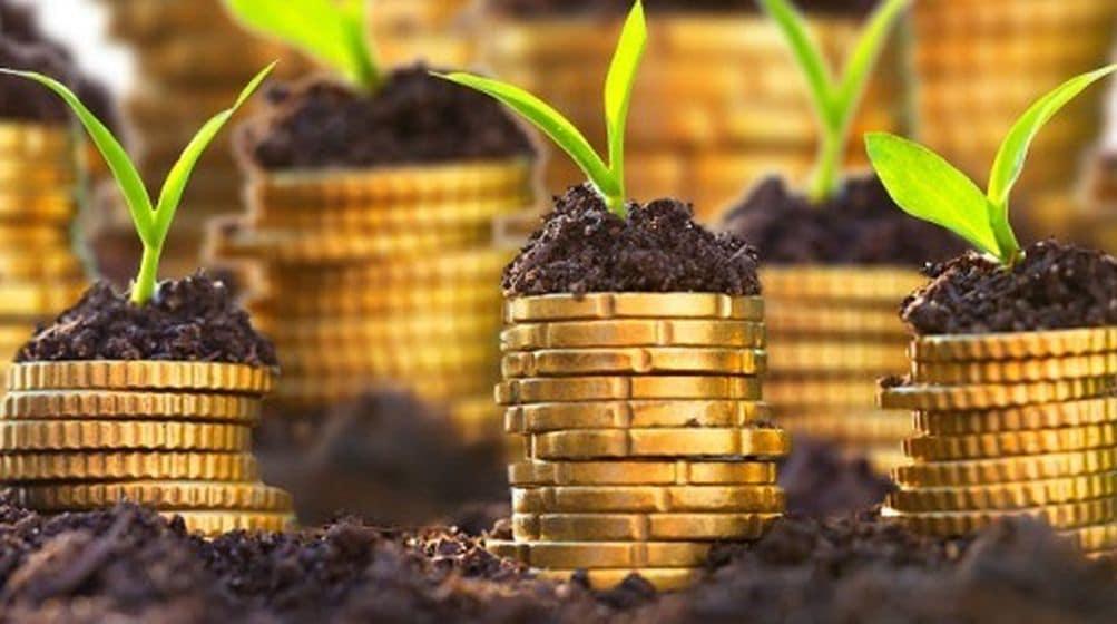 Pitajte sve o IPARD-u, biznis planu i kreditima na besplatnim onlajn konsultacijama